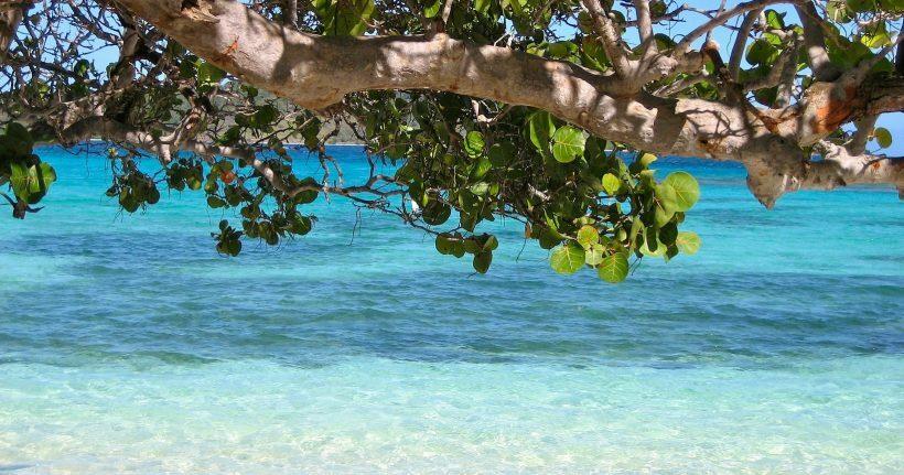 ¿Qué tal vivir un año en el Caribe?  Barbados planea otorgar visa de 12 meses a nómadas digitales